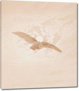 Фридрих Каспар Давид. Летящая сова на фоне лунного неба