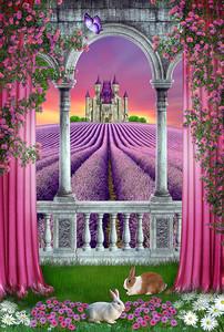 Вид из арки на лавандовое поле с замком
