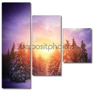 Красивый зимний пейзаж с елки