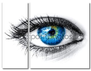 Синий женщина глаз макросъемки