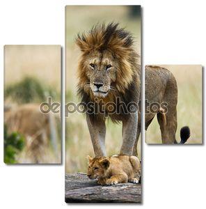 Большой Лев с львенка