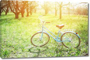 синий велосипедов на зеленой траве в дневное время