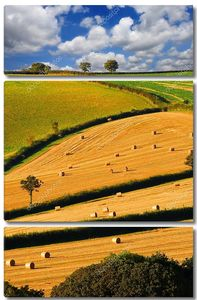 Британская деревня во время сбора урожая