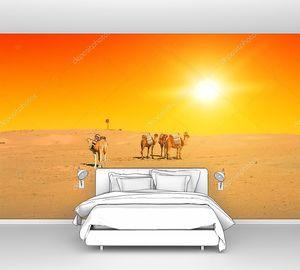 Верблюды на закате