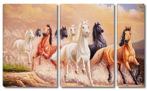Лошади бегут
