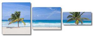 две пальмы на тропическом пляже, Доминиканская Республика