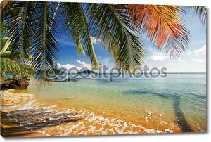 Красивый тропический пляж