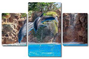Два дельфина в прыжке