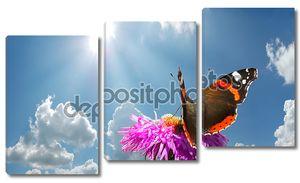 Бабочка на цветке на фоне облаков