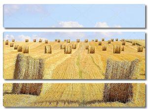 тюков соломы Собранный поле с шарики сторновки