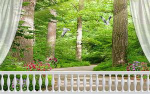 Лес за балюстрадой