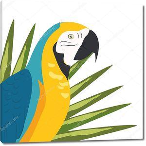 Мультяшный попугай