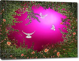 Голуби в розовом просвете