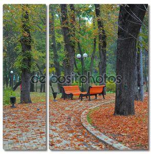 Скамейки в городском парке