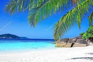 Тропические белый песчаный пляж с пальмами