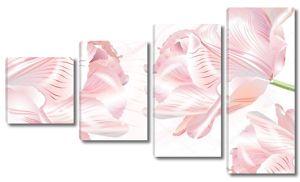 Белый фон с большими розовыми розами