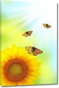 Солнечный подсолнух с бабочками
