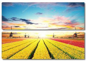 Яркое поле тюльпанов с мельницами