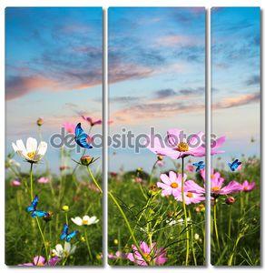 Бабочек летающих в цветы