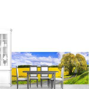 Цветущие желтые поля во Франции