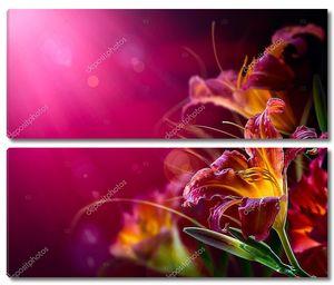 Цветы на красном фоне
