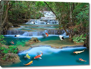 Разноцветные рыбки в водопаде