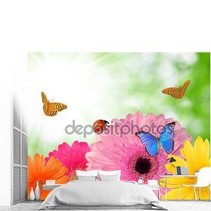 Герберы с бабочками
