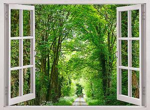 Убегающая дорожка в окне