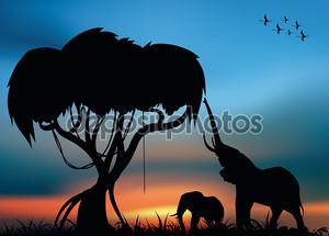 Африканских savvanna с слонов
