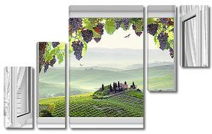 Виноград в распахнутом окне