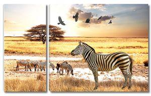 Саванна с зебрами