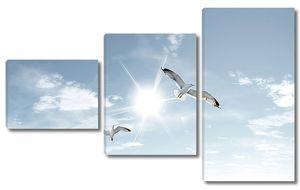 Солнце с чайками