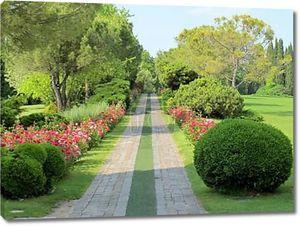Путь розы через ландшафтный парк