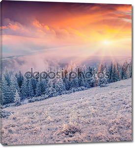 восход солнца в горном лесу