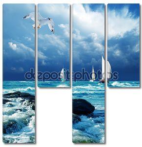 плавание регаты