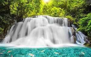 Бурлящий лесной водопад