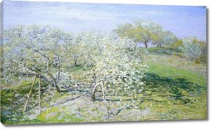 Моне Клод. Яблони в цвету, 1873