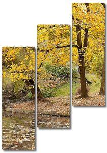 Озеро с лебедем в Осеннем парке