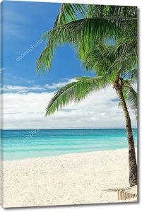 Белый песчаный пляж с пальмами