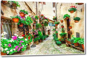 красивые цветочные улицы Спелло