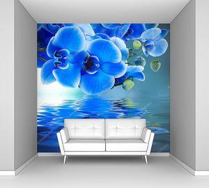Голубая орхидея фон с отражением в воде