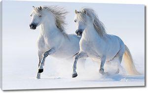Кони в снегу