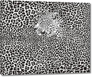 фон леопарда
