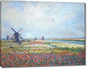 Клод Моне. Поля тюльпанов возле Гааги