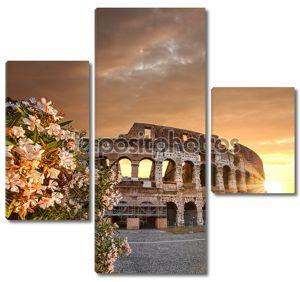 Колизей в закате