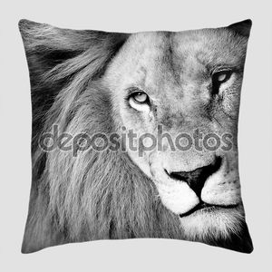 Крупный портрет льва