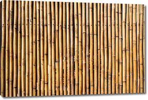 бамбуковые стены фон