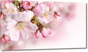 Весенний цветочный фон с розовым цветом