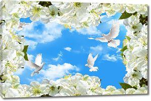 Небо и голуби в цветущей рамке