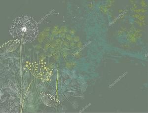 Полевые цветы - трава и одуванчик